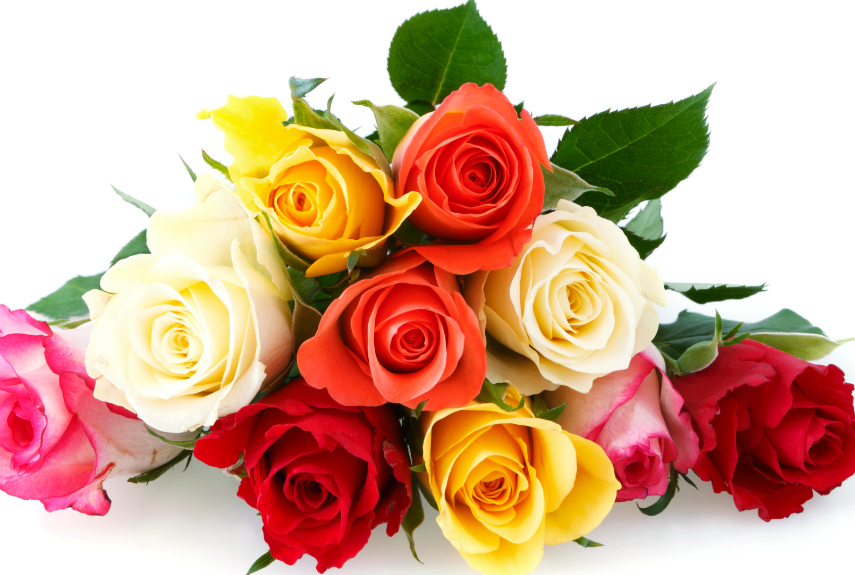 When You Gift Someone Flowers, Know What Message You Send With The Colors