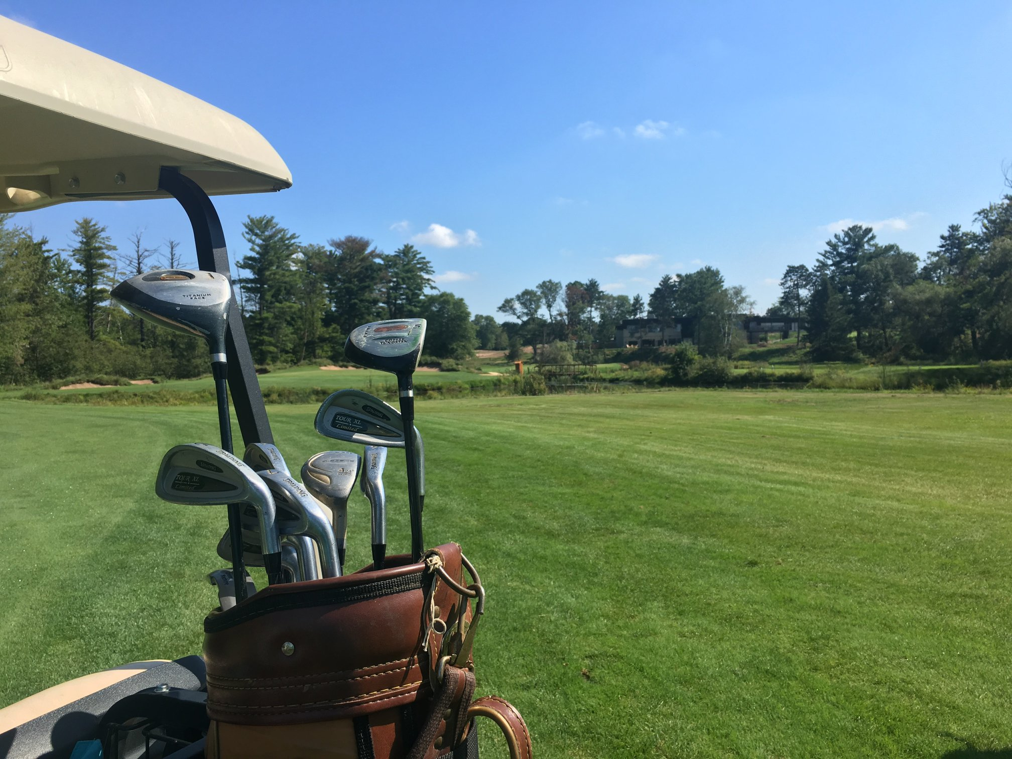 Points To Remember While Buying Golf Clubs